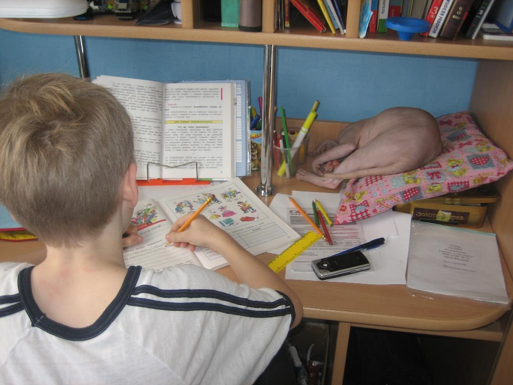 Children and Motivation: 7 Steps Proven by Science